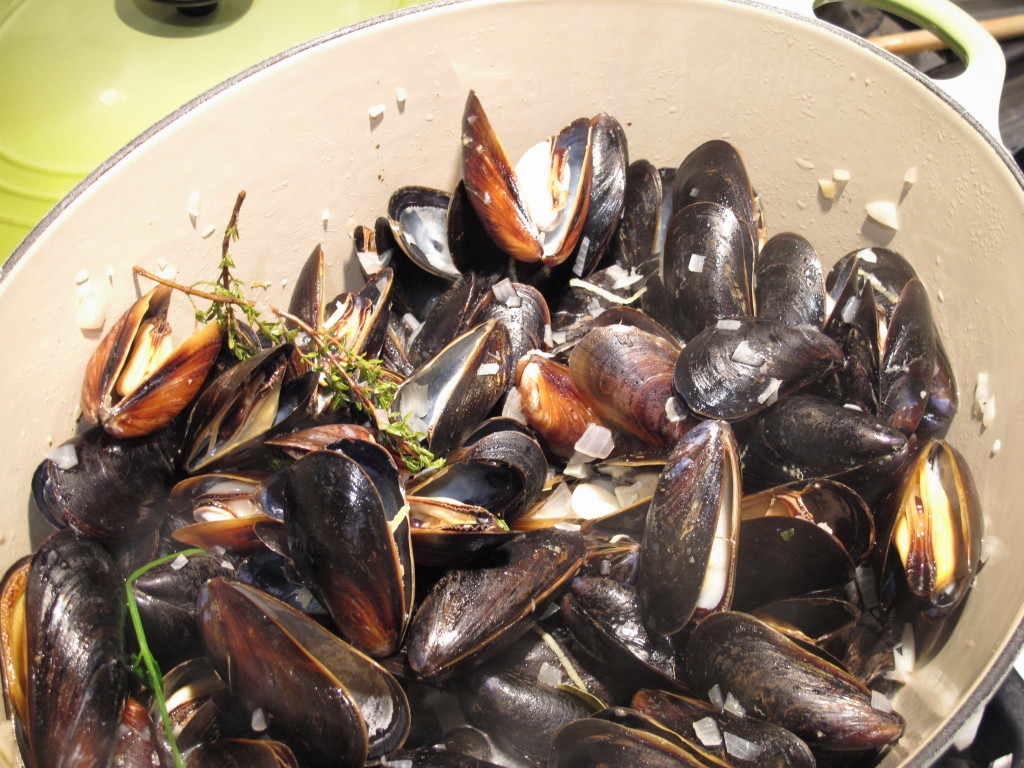 Mussels 026