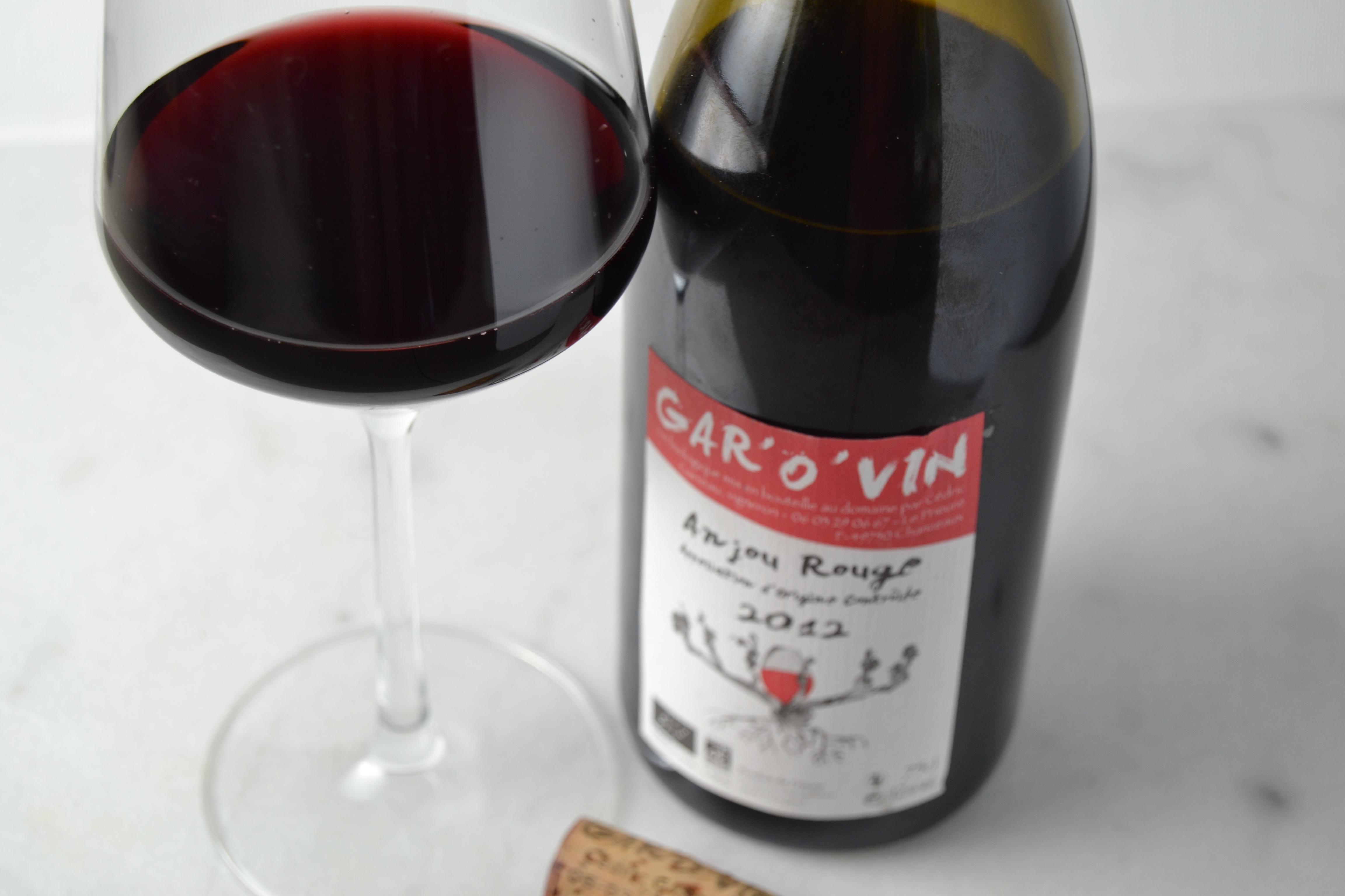 Gar'O'Vin Cabernet Franc Anjou Rouge